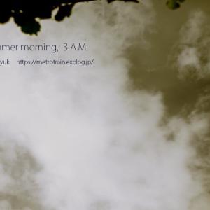 夏至の朝、午前3時