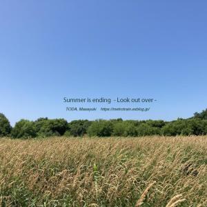 夏がゆく - 見渡す -