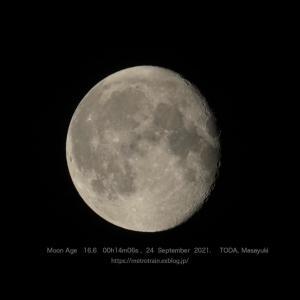 月齢16.6のお月さん