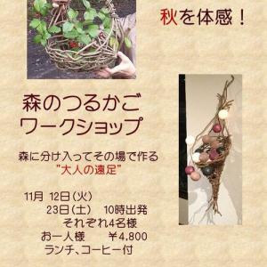 11/12(火)、11/23(土)つるかご編みごワークショップご案内