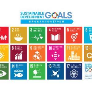 2030年世界が今より幸せな世界になるために~SDGsを学ぶ