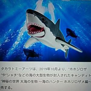 鮫だって 可動式フィギア