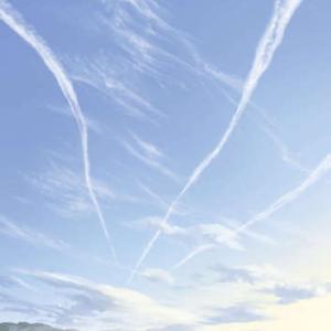 飛行機雲と朝焼けの海