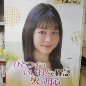 ポスターで覚える新進女優さん名