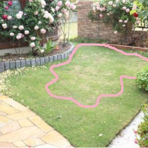 芝生再生への流れを記録する。