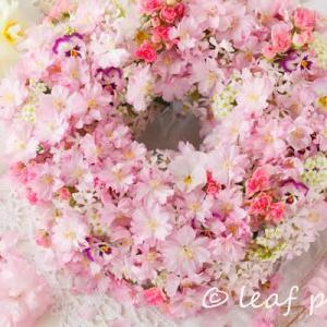 桜の花でリース