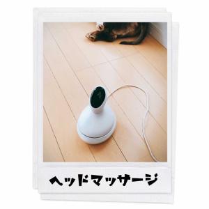 【購入品レポ】ヘッドマッサージ機