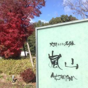 嵐山宝厳院(ほうごんいん)