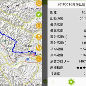 青梅丘陵ハイキングコースをのんびりと