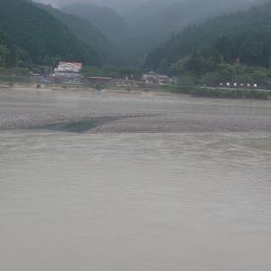 初めて見た天竜川!