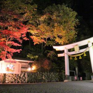 おすすめ紅葉スポット『宝登山神社』(11/13)