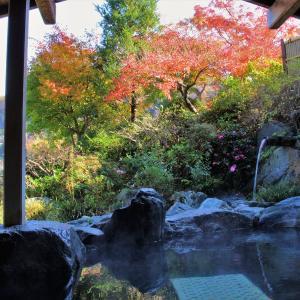 紅葉を観賞しながら露天風呂でのんびり♪
