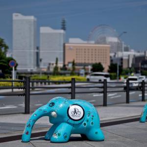 横浜の風景2020[4-1]