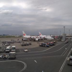 JALの国内線クラスJが、フルフラットシートに!