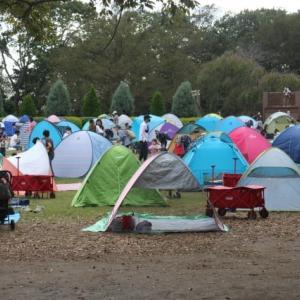 秋天日レジャー、密集するテント集落