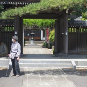 万緑の境内に鎮座する「寿老人様」に五月晴れ―佛法寺