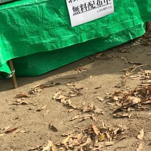 今週も千曲川堤防決壊の被災地にてボランティア