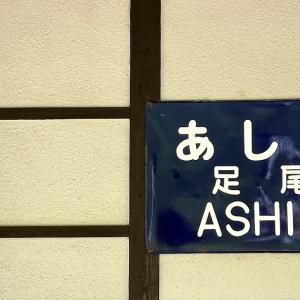 INTO ASHIO VALLEY: ASHIO RAIL STATION