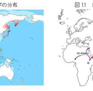 「縄文ノート43 DNA分析からの日本列島人起源論」の紹介