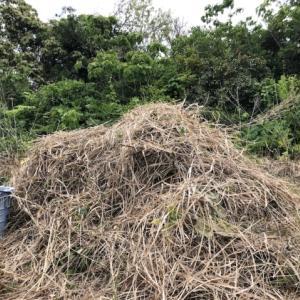 干し草のベッド