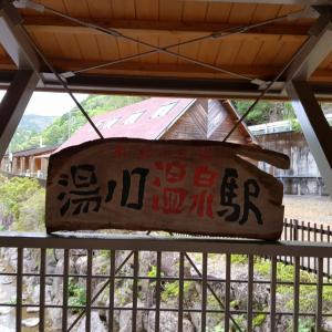 日本一時帰国(24)トロッコ列車