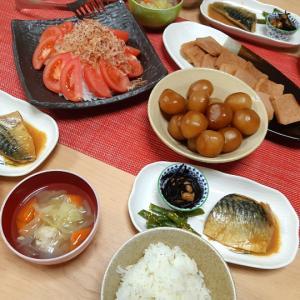 夜ごはん。サバの味噌煮