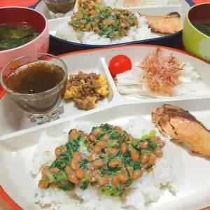 夜ごはん。鮭の西京焼き