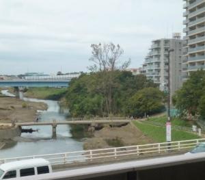 二子多摩川の氾濫場所