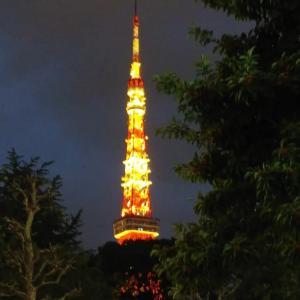 夕暮れの東京タワー◆と...長男引越し準備