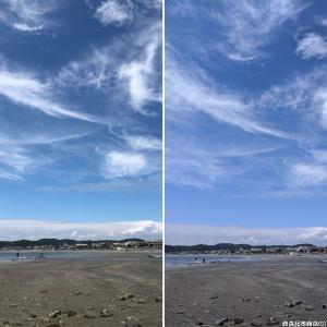 iPhone XとGoogle Pixel 3のカメラ比較