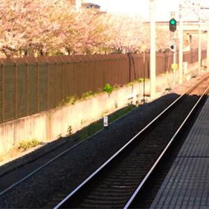 200408. Next to Go ∞