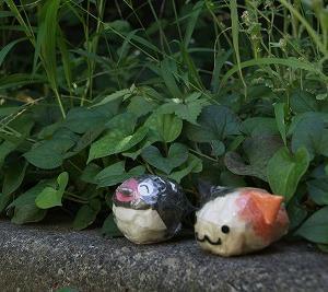 2019 秋・なかの坂公園♪ その8