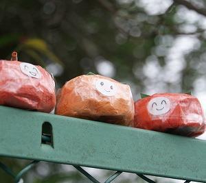 ちり紙細工で、柿を作る♪(6/10)