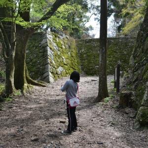 過去の登城記録 2016年4月 日本100名城 高取城