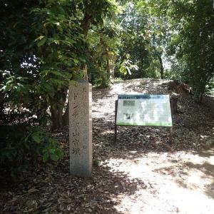 MOZU-FYRU CARD巡り 4回目 ニサンザイ古墳 定の山古 墳御廟表塚古墳 と色々3枚ゲット