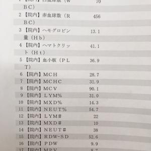 抗がん剤33回目 丸1年【注意】グロ画像公開