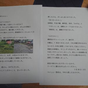母への手紙(報告書)(^^;
