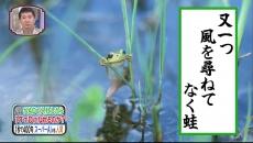"NHKニュース「""初音ミク""に期待/『1億人の大質問!?笑ってコラえて!』で和楽器バンド『千本桜』"