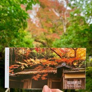 2020❤︎秋の京都