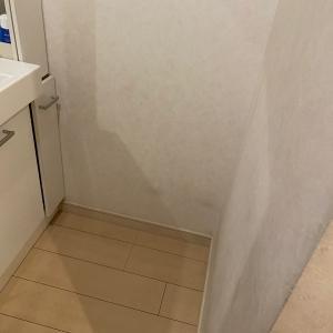 洗面所にゴミ箱は必要か?