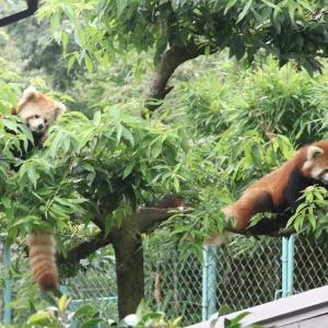 西山動物園3days【前編】