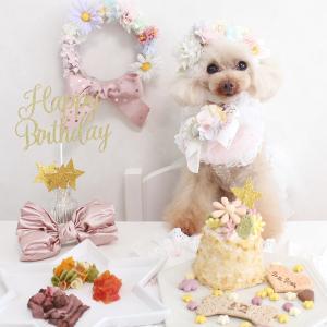 お誕生日ケーキとごちそう☆笑顔いっぱいのシュシュちゃんでございます...