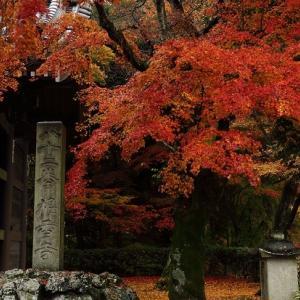 第82番札所・根香寺の紅葉
