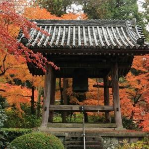 白峯寺の紅葉