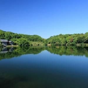 石田で見つけたきれいな池