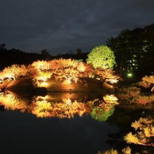 栗林公園の紅葉ライトアップ【あす29日まで】