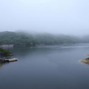 雨の大内ダム