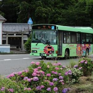 あじさい咲くバス停