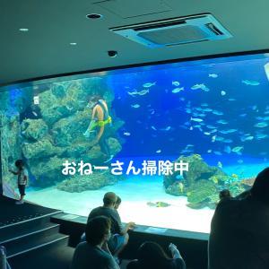 いつかの水族館