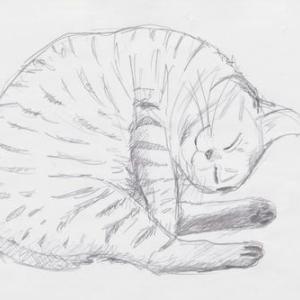 猫が描けない(^^;)